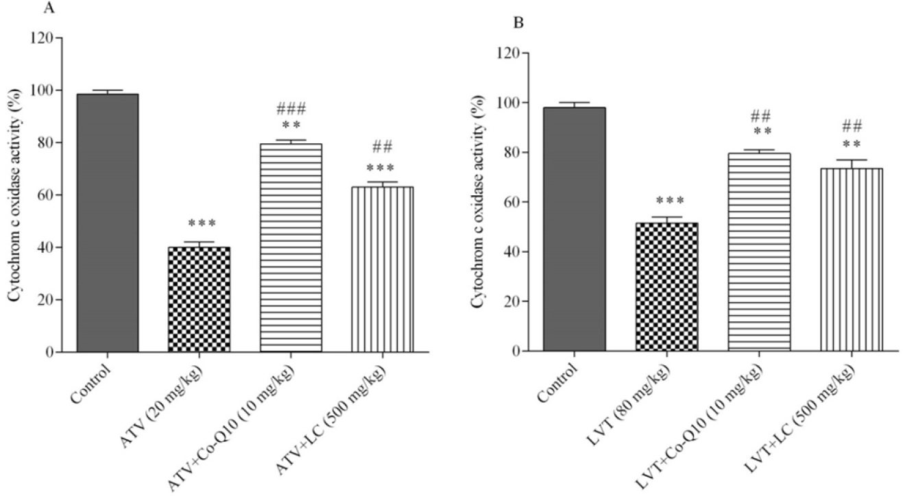 Figure 5: The effects of atorvastatin (ATV) and lovastatin (LVT) alone or in combination with Co-Q10 or L-carnitine (LC) on the cytochrome c oxidase (complex IV) activity. Data are presented as mean &#177; SEM (n &#61; 6). One-way ANOVA was used to analyse the data. &#42;&#42; and &#42;&#42;&#42; significantly different from the control (<i>P</i> &#60; 0.01 and <i>P</i> &#60; 0.001, respectively). ## and ### significantly different from atorvastatin and lovastatin alone groups (<i>P</i> &#60; 0.01 and <i>P</i> &#60; 0.001, respectively).