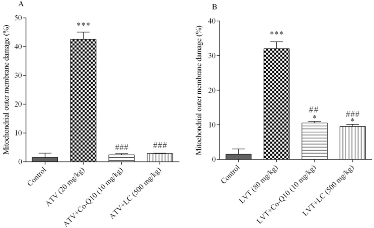 Figure 6: The effects of atorvastatin (ATV) and lovastatin (LVT) on mitochondrial outer membrane integrity. Data are presented as mean &#177; SEM (n &#61; 6). One-way ANOVA was used to analyse the data. &#42; and &#42;&#42;&#42; significantly different from the control (<i>P</i> &#60; 0.5 and <i>P</i> &#60; 0.001, respectively). ## and ### significantly different from atorvastatin or lovastatin alone groups (<i>P</i> &#60; 0.5 and <i>P</i> &#60; 0.001, respectively).