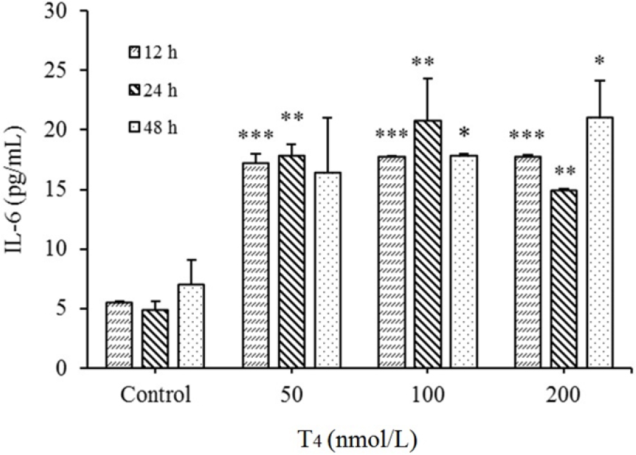 Figure 1: Up regulation of interleukin-6 (IL-6) levels in HUVECs by T<sub>4</sub> exposure. After treatments with T<sub>4</sub> (50, 100 and 200 nmol/L) for 12, 24, and 48 h, protein expression was evaluated by ELISA method. *<i>P</i> < 0.05, ** <i>P</i> < 0.01, and *** <i>P</i> < 0.001, indicate significant differences in comparison with control group. Data are presented as mean ± SD. Values derived from three independent experiments. T<sub>4</sub>, thyroxin.