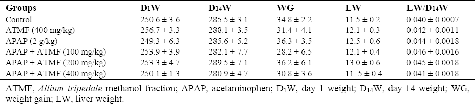 Table 1: Body and liver weight changes in studied groups. Values are expressed as mean ± SEM, n = 6 for each group.
